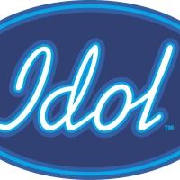 Idol og mangelen på seriøs kritikk