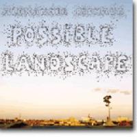 Possible Landscape – Knitrende utsikt, mulige blikk