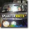 The Shakeout – Sprudlende hitparade