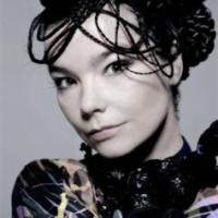 Björk vekker harme