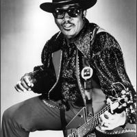 Bo Diddley er død