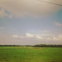 Desertfest Antwerp: ørkenrockens høstfest!